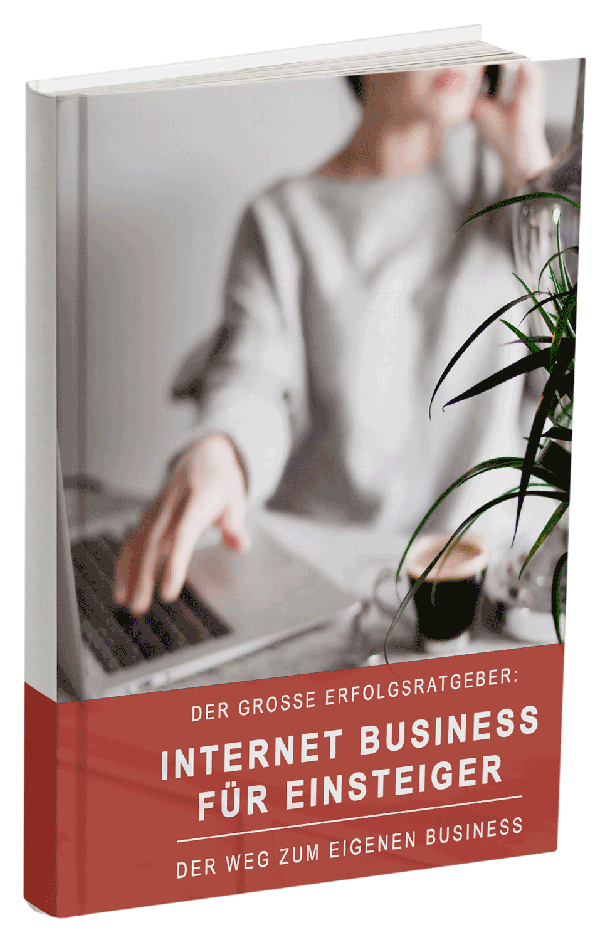 Internet-Business-für-Einsteiger-ebook